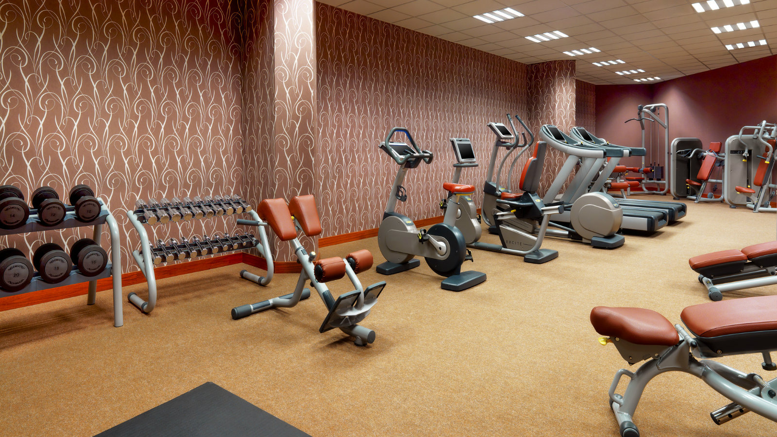 24-hour Sheraton Fitness for effective full-body workout at Sheraton Moscow Sheremetyevo